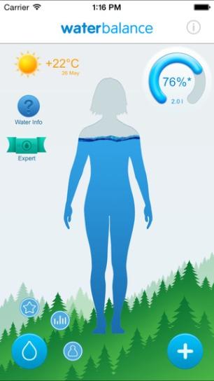 Imagem/ Reprodução Waterbalance - Iphone